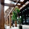 广州蝶变提供的蝶变仿石仿木怎么样——七星民宿建造