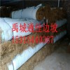 苏州河道修复植物纤维毯 环保草毯 生态植被毯 欢迎采购