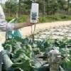 西安好的土壤硬度仪便携式土壤紧实度计 西安土壤硬度仪便携式土壤紧实度计