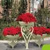 立体景观绿化公司-靠谱的立体景观绿化沈阳杰欣景观绿程提供