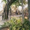 烟台公园景观设计承接-可靠的生态园建设