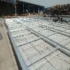 广信干燥设备优良的黑龙江木材干燥设备 黑龙江干燥窑厂家